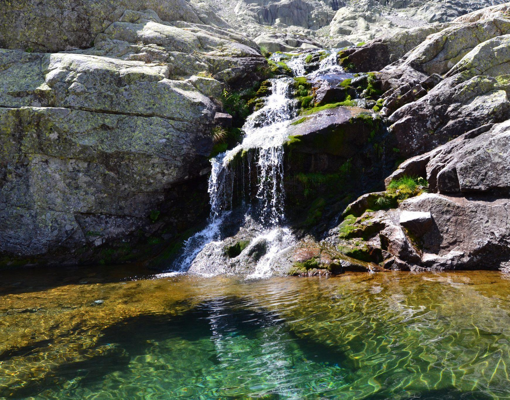 Un baño en una poza cerca de la Laguna Grande (Ávila)