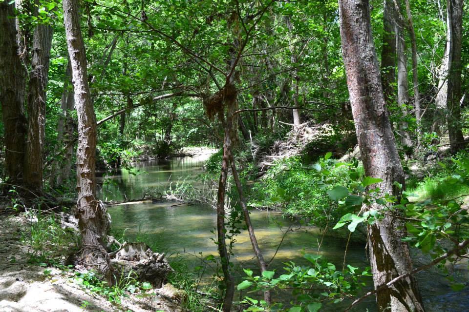 Sendero a orillas de las Hoces del Río Duratón