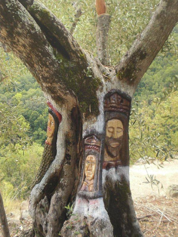 Bonito árbol en la ruta del bosque de los espejos