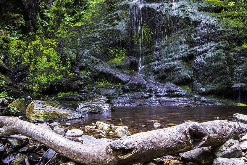 Naturaleza: Cascada del Gualtón