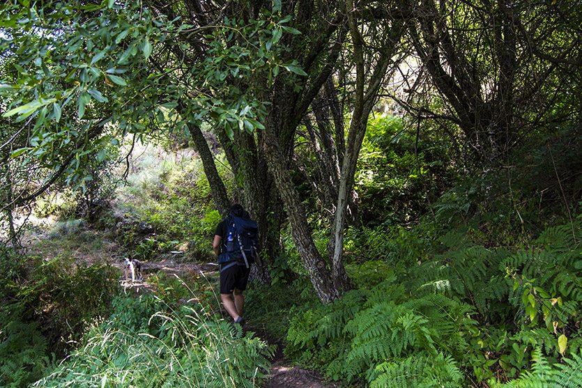 Ruta Carracedo de Compludo hacia Cascada del Gualtón
