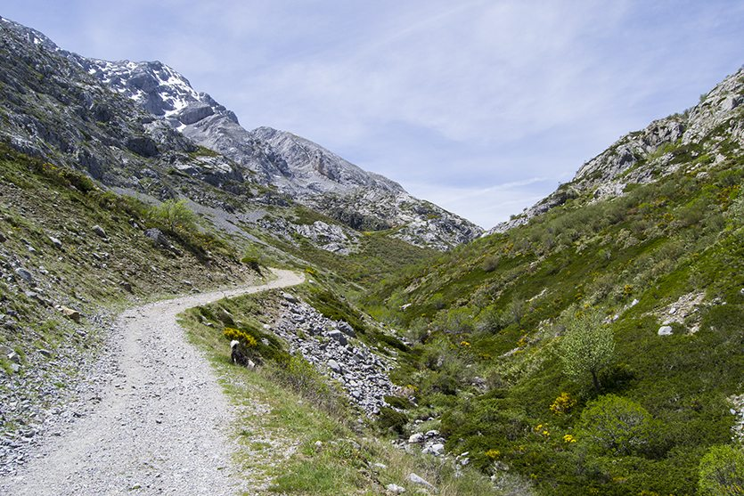 Senda de Mazobre con vistas al pico del Espigüete