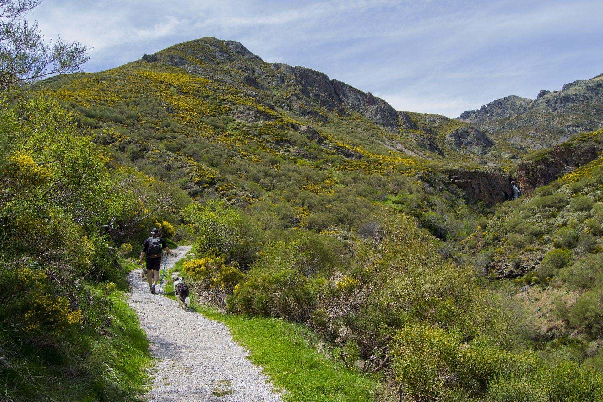 Sendero hacia la Cascada de Mazobre