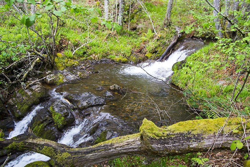 El río Noceda y sus saltos de agua
