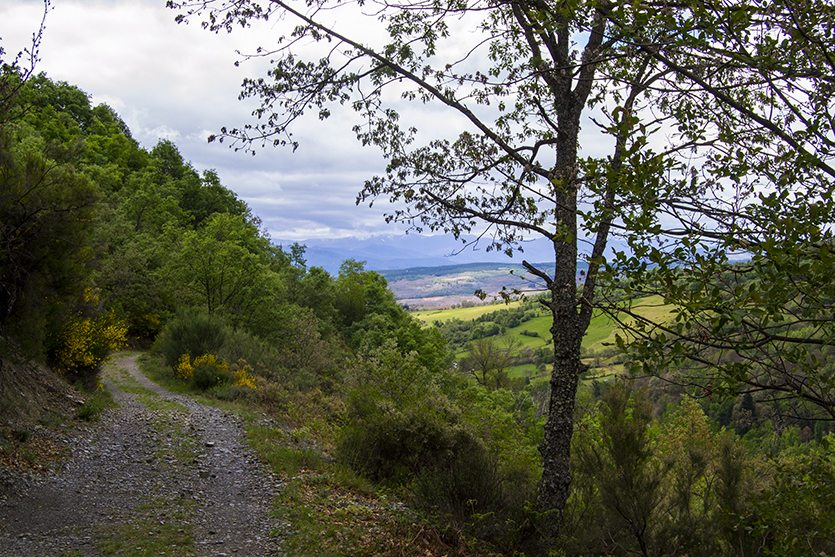 Sendero de la ruta de Noceda: Ruta de las Fuentes Curativas