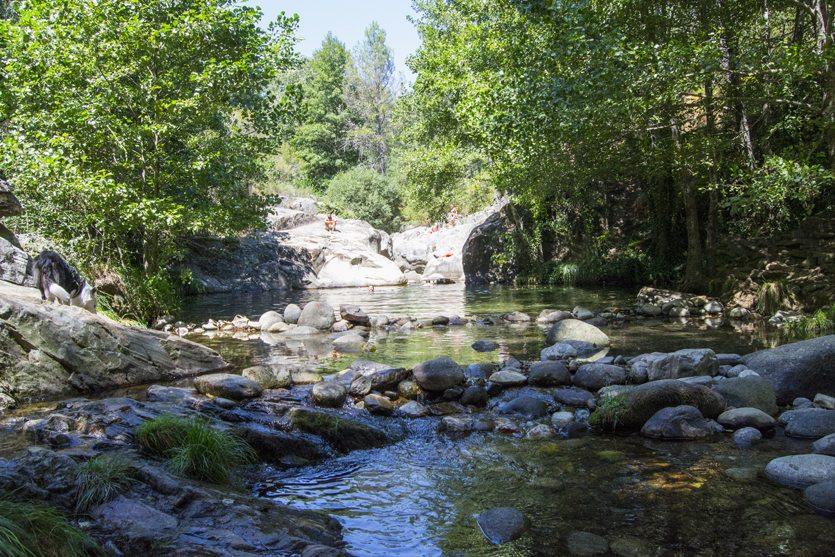 El Charco Verde del río Pelayo