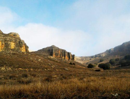 Ruta Sepúlveda – Puente de Villaseca (Senda Larga)