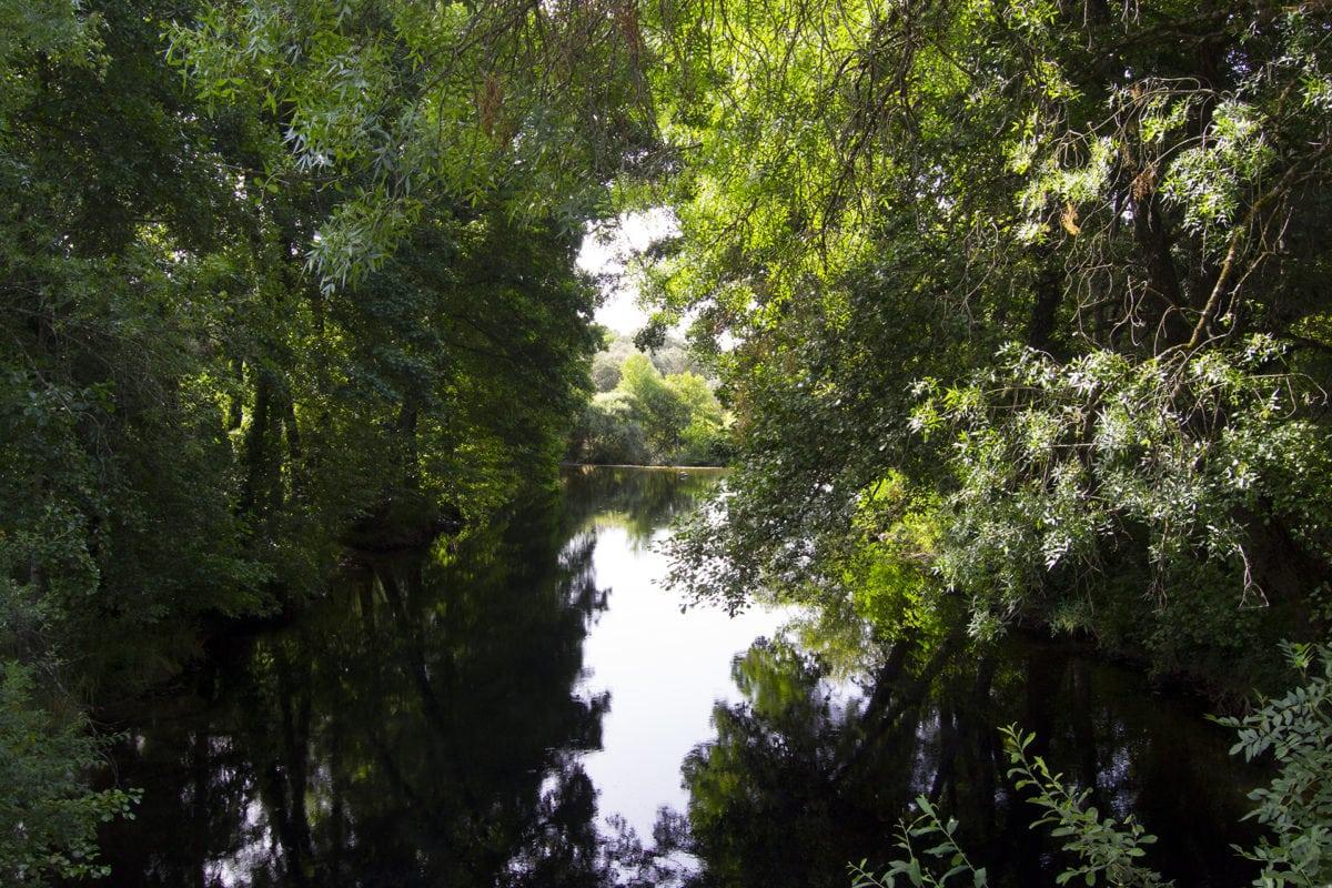 Río Arenal